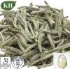 Té blanco Polyphenls 25-95% del extracto blanco antienvejecedor del té del cuidado médico