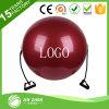 نظام يوغا [جم] كرة مع مقبض يطبع كرة عالة علامة تجاريّة