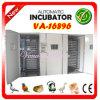 Incubateur automatique bon marché accessible d'oeufs de Digitals (VA-16896)