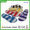 숙녀 PVC EVA Sandals와 Slippers (RW16567)