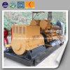 Générateur électrique d'alimentation électrique de biogaz