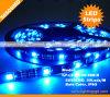 Tiras de /Flexible de la tira de IP65 5050SMD 30LEDs LED