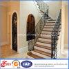 Residential multifunzionale Modern Wrought Iron Railings (dhrailings-30)