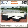 Mobilia di vimini del blocco per grafici di alluminio/sofà di vimini del PE (SC-B9504)