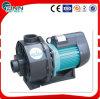 4.0 Bomba de água de alta pressão submergível elétrica do cavalo-força mini para a piscina /SPA/Pond