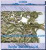 Lugworm vivant, Clamworm, le Sandworm-Meilleur attrait de vie (OIKKI-LUGWORM)