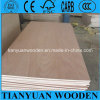 4 ' x8 Commercial Plywood 3.2m m Okoume Plywood Sheets