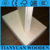 Premier Grade 3mm 5mm 18mm Best Birch Plywood pour Furniture