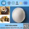 Colágeno de qualidade alimentar como suplemento alimentar nutricional