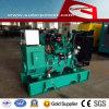 Cummins 25kVA/20kw Open Type Electric Power Generator met ATS