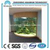 4분의 1 아크릴 물고기 Tank/Aquarium