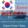Remetente de frete internacional do agente de transporte do mar FCL LCL de China a Busan, Incheon