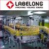 Flaschen-Öl-füllende mit einer Kappe bedeckende Maschinen-Pflanze des Fabrik-Preis-automatisches großes Haustier-5L