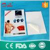 Het gouden Hete Capsicum Van uitstekende kwaliteit Paster van de Leverancier voor de Reumatiek en de Lumbago van de Hulp