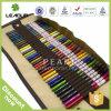 Crayon de couleur de schéma