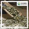 Семена ежегодника питания стерженей семян тыквы кожи Shine