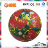 Pvc Inflatable Printing Strawberry Ball voor Play en Sports (YY9-08)
