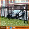 Clôture tubulaire enduite de poudre noire/acier clôturant/clôture fer travaillé