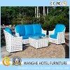 Insieme di vimini della mobilia di svago del sofà del giardino del rattan esterno del Brown