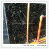 Portor nero con le mattonelle di marmo dorate per la pavimentazione