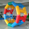Inflatable colorido Zorb Roller Ball para Water Walking (CY-521)