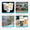 Überlegenes PET überzogenes Papier für die Herstellung von Papiercup