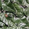 인공적인 녹색 담 프라이버시 스크린