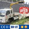 camion électrique de grue de boum du bâton 1000kg mini à vendre