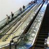 Scala mobile dell'interno della casa dell'elevatore del passeggero di Deeoo