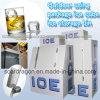Ao ar livre Using o escaninho de armazenamento do gelo do cubo de gelo do pacote