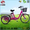 Triciclo eléctrico de la rueda grande de la bici de 3 ruedas para el cargo