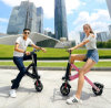 8inch Rad 14kg, das bewegliches elektrisches Fahrrad faltet