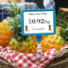 ثمرة مخازن بلاستيكيّة سعر عرض حامل