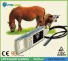 Ultrasonido veterinario portable de la palma de Fn610V