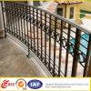 Guardavia del balcone/balcone Handrail/Iron che recinta il pannello dell'acciaio inossidabile Fence/Iron Guardrail/Fence Gate/Fence