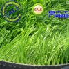 Grass artificial para Sports Field