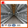 Poultry FarmのためのH Type Layer Cage System