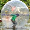 Boule de marche de hamster de boule d'Aqua de boule de l'eau
