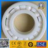 Roulement en céramique 6004ce de qualité de fabrication de la Chine plein