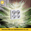 يشبع ينمو طيف [لد] أضواء [800و] عرنوس الذرة [لد] ينمو ضوء