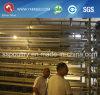 Оборудование фермы для слоя или подавать бройлера