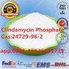 مضادّ للجراثيم [كس]: 24729-96-2 كلينداميسين فسفات مادّة كيميائيّة صيدلانيّة