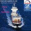 Serviço de transporte de FCL/LCL de China Shenzhen Shanghai a Austrália Melbourne, Sydney, Brisbane