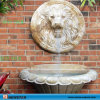 De binnen Fontein van het Water van de Muur van de Waterval van het Huis Decoratieve