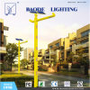 8mポーランド人60W LED Solar Wind Turbine Street Light (BDTYN850-w)