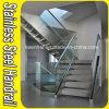 De Trede van het roestvrij staal/de Balustrade van het Glas van het Kanaal van U Balcony/Terrace