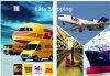De Dienst van de Logistiek van de efficiency van China aan het Verschepen van Brazilië