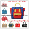 Les plus nouveaux sacs à main de dames de cuir de mode de conception