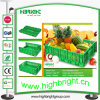 Cadre compressible de transport de fruit