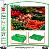 Market eccellente Plastic Storage Container per Fruits e Vegetables